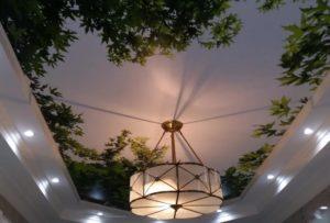 натяжной потолок с фотопечатью деревья